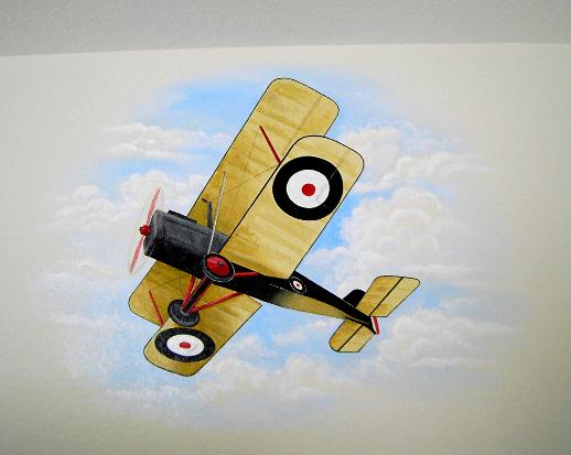 Airplane Mural, Murals for Children