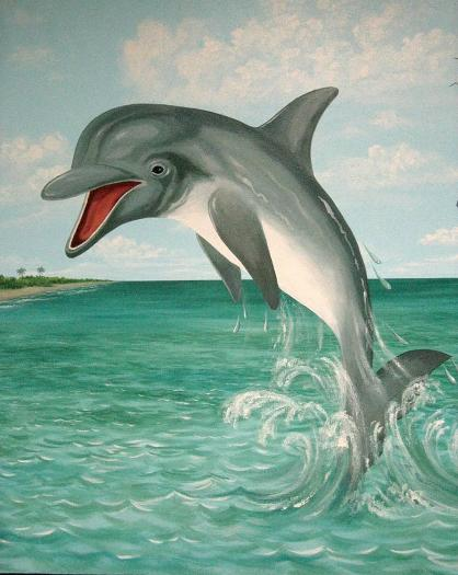 Leaping Dolphin Mural, Mural Mural On The Wall Inc.
