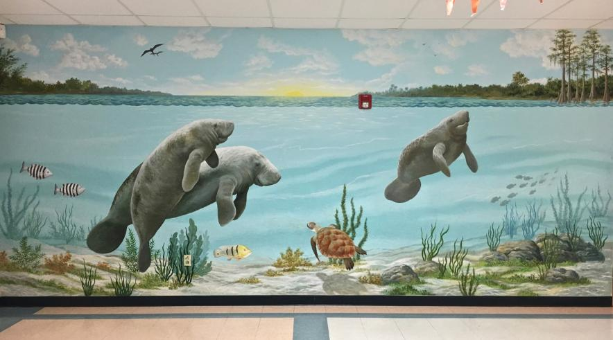 Mural: Manatees Under Water, Mural Mural  On The Wall, Inc.