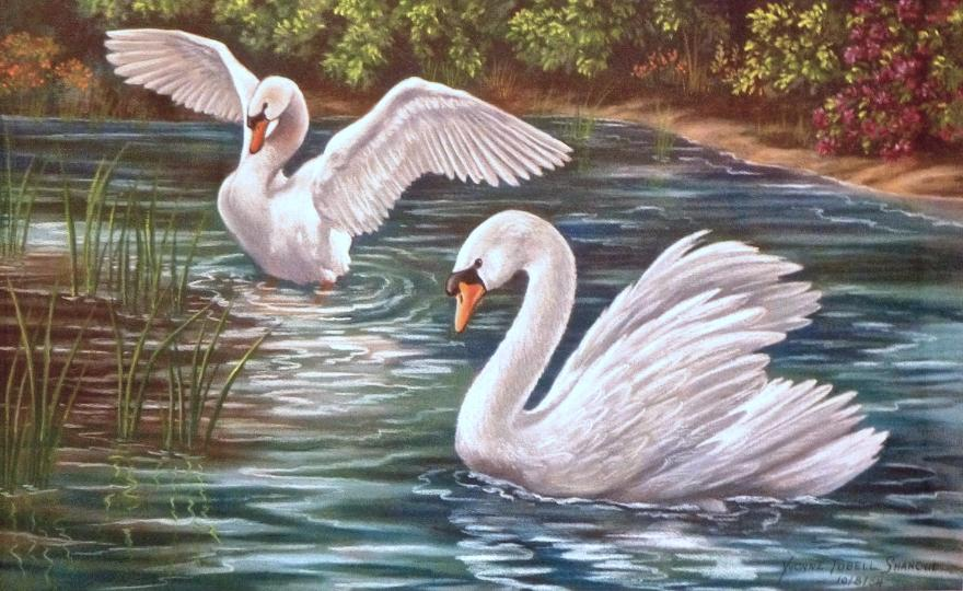Pair of Swans -  Mural Mural on The Wall Inc.,