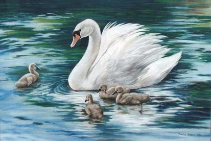 Swan with her Cygnets -  Mural Mural On The Wall  Inc.