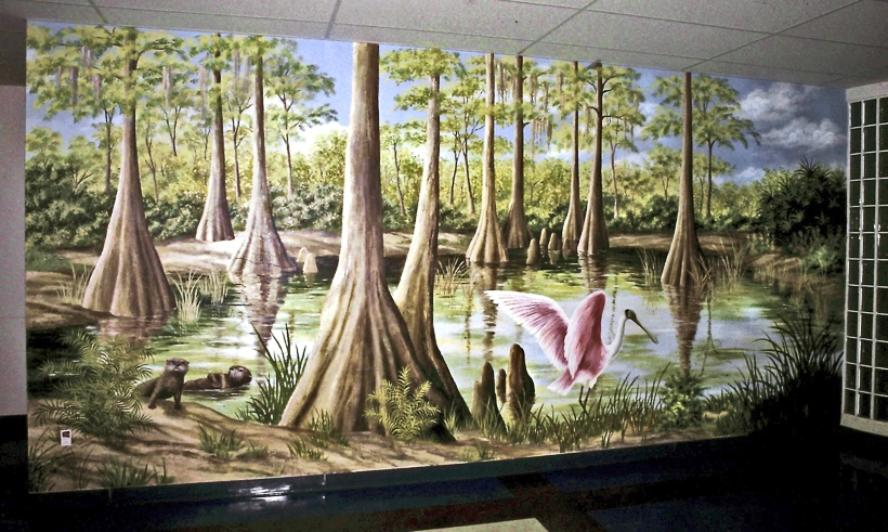Everglades Cypress Trees Mural